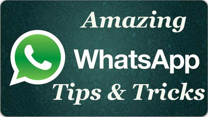 Image result for How can you send whatsapp messages programmatically in android
