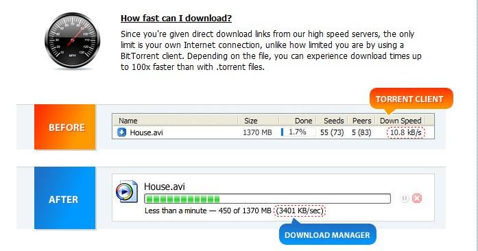 torrent download using idm