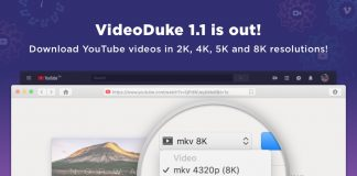 Download Videoduke